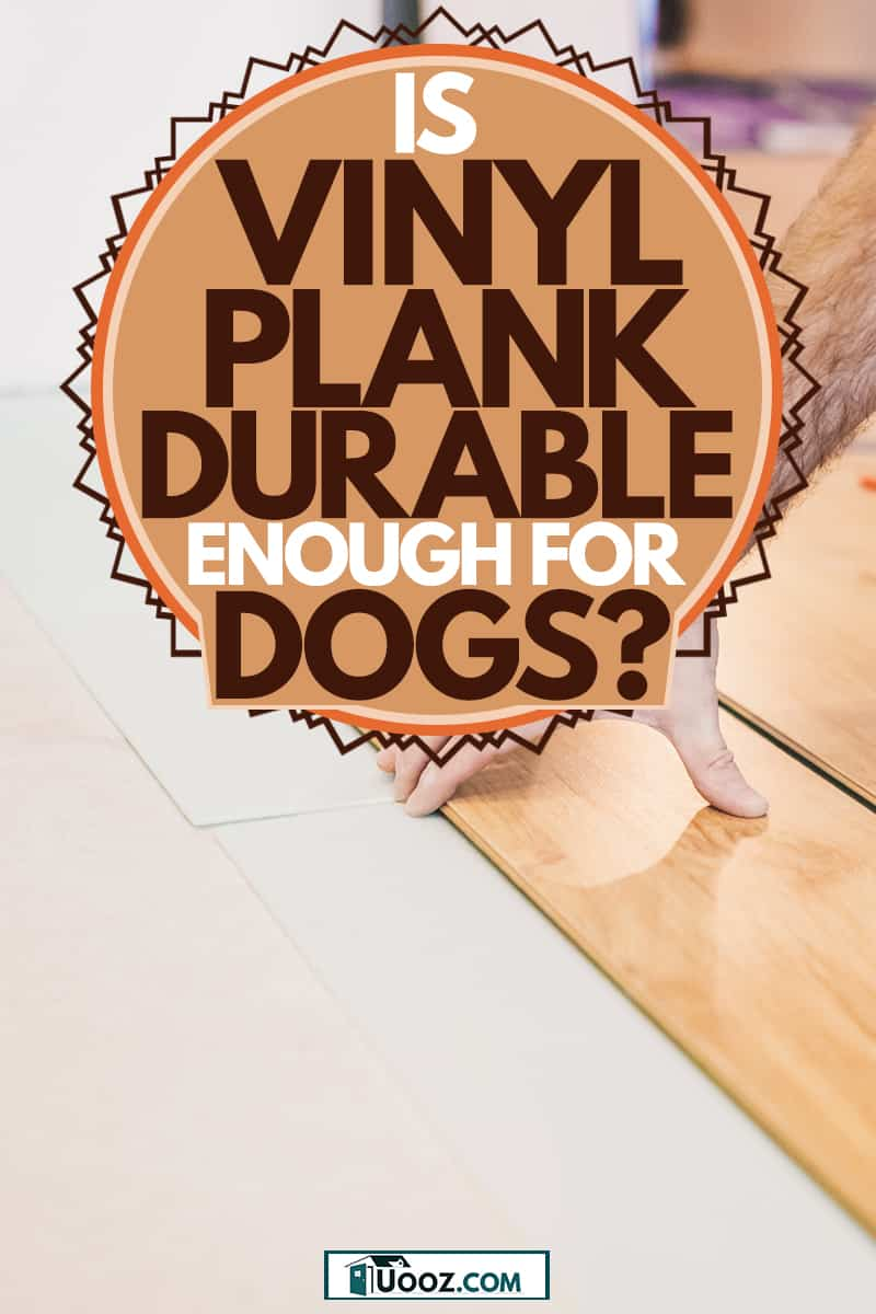 A man installing vinyl flooring plank on the floor over old-battered tiles, Is Vinyl Plank Flooring Durable Enough for Dogs?