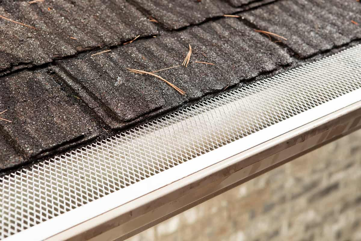 A gutter with leaf guard and leaves on the roof
