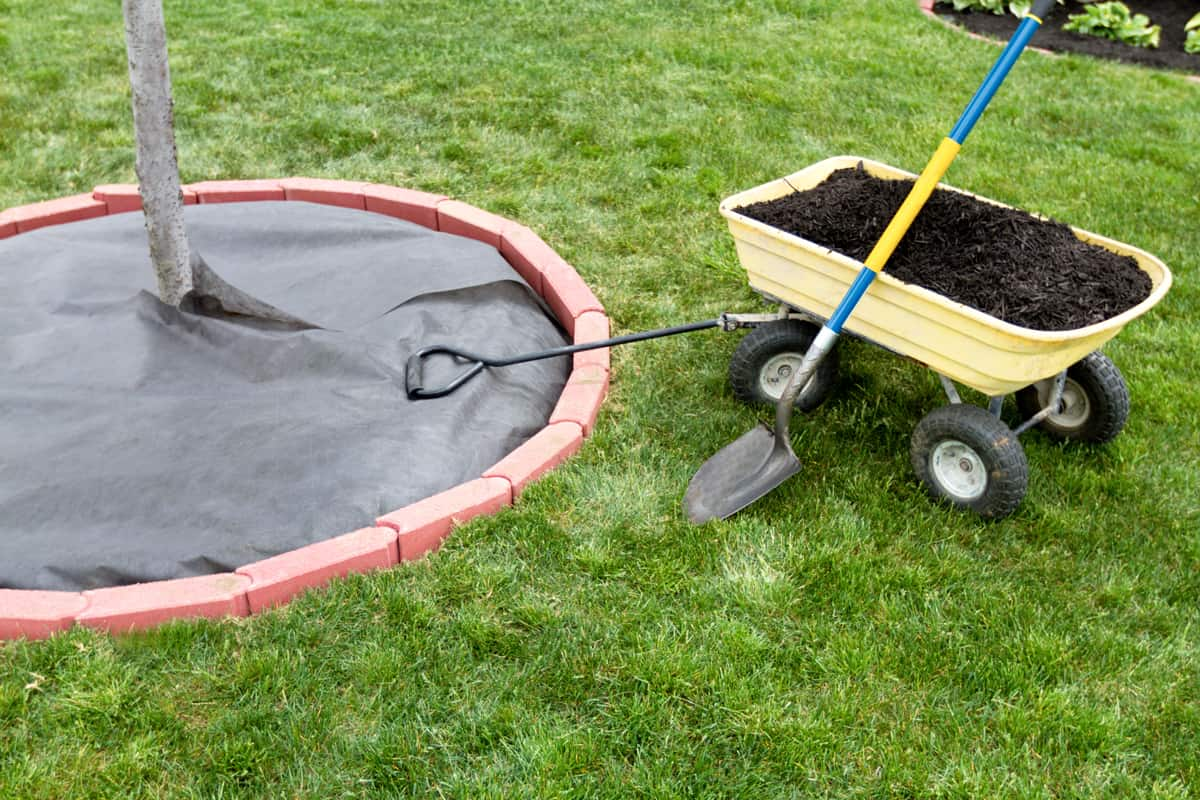 A wheelbarrow with a shovel and dirt in it