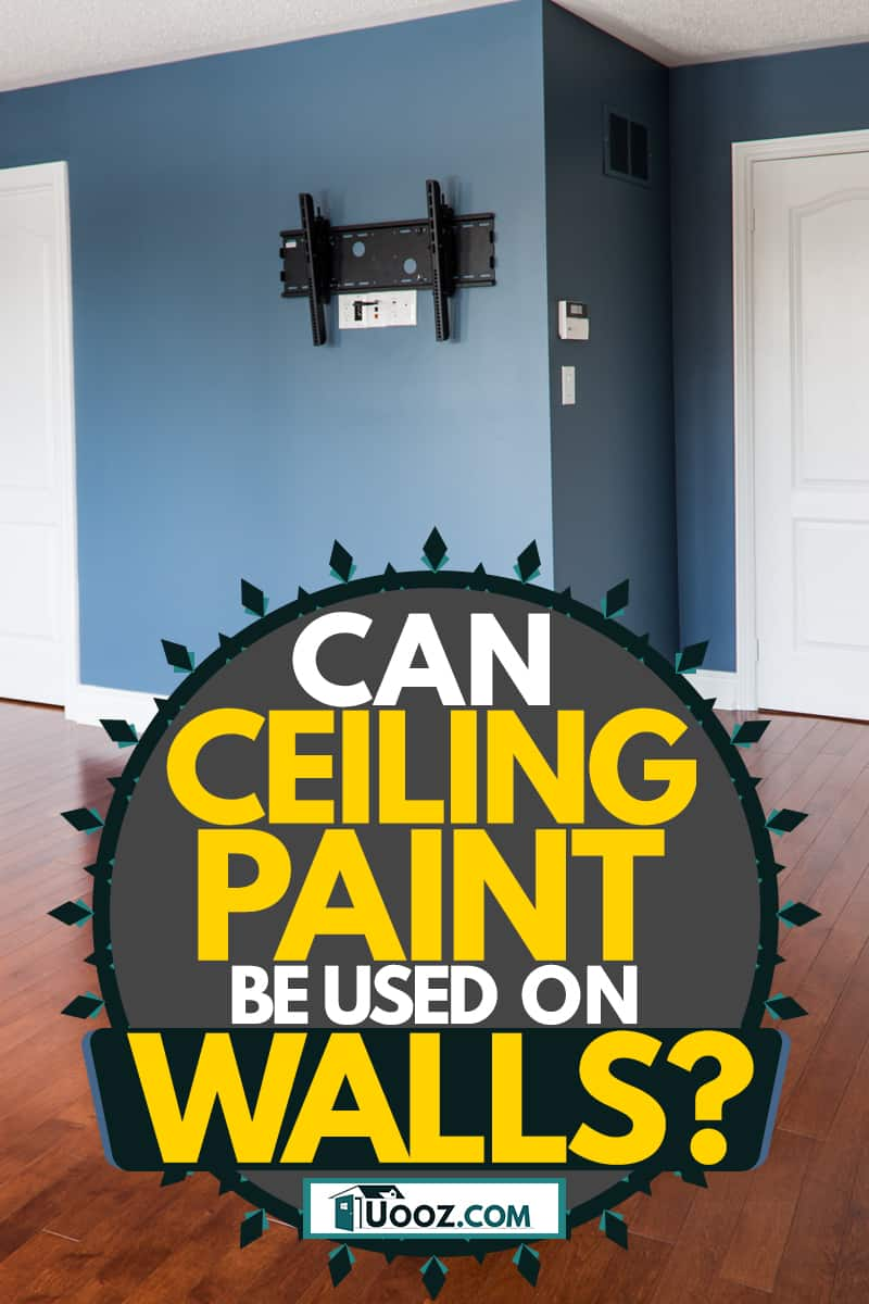 A blue painted wall with wooden laminated flooring, Can Ceiling Paint Be Used On Walls?