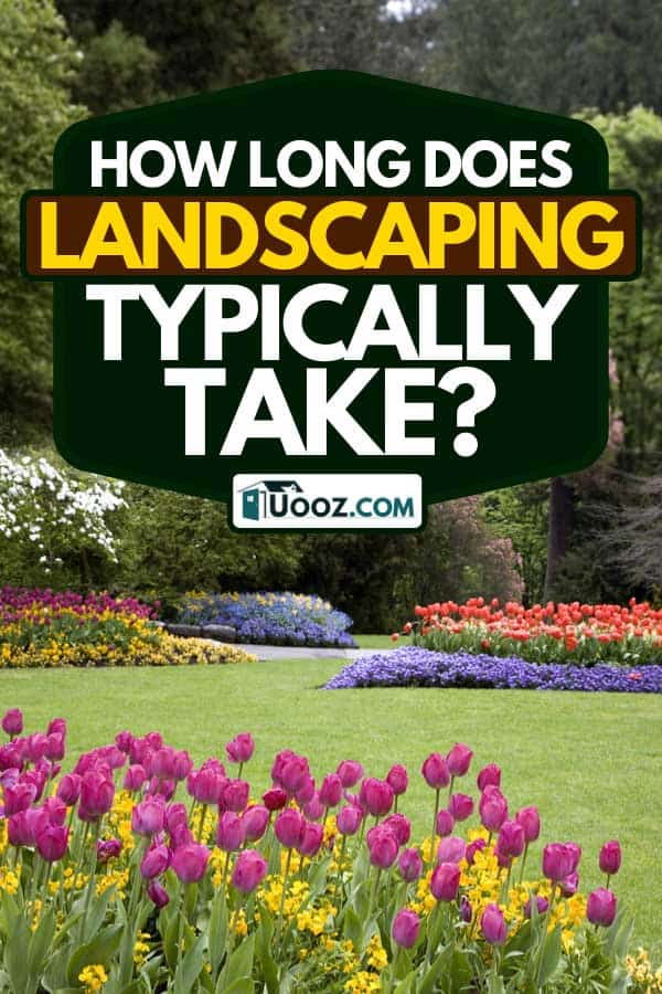 A colorful garden landscape and grassy lawn, How Long Does Landscaping Typically Take?
