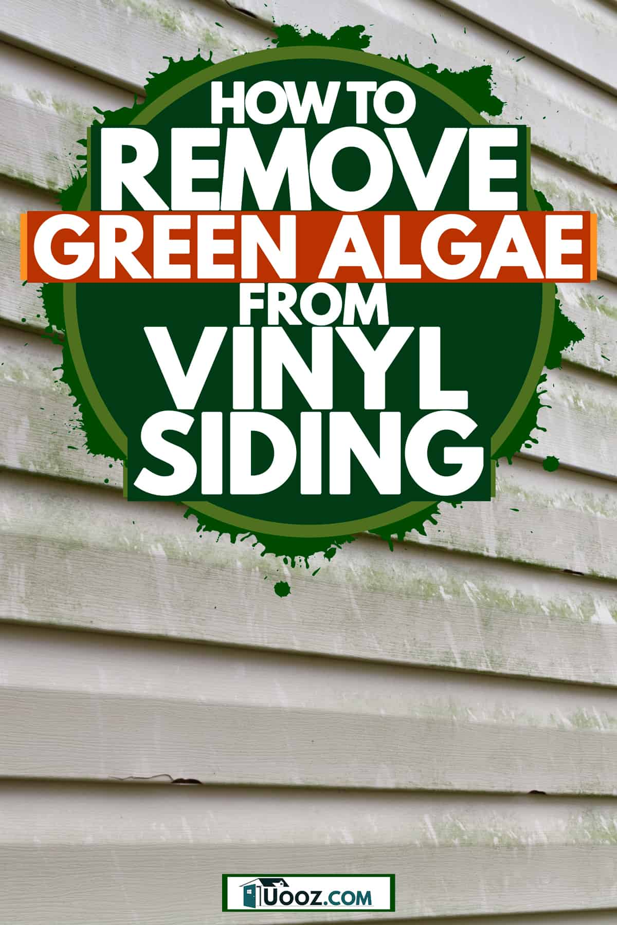 A house with vinyl sidings with green algae growing on the walls, How To Remove Green Algae From Vinyl Siding