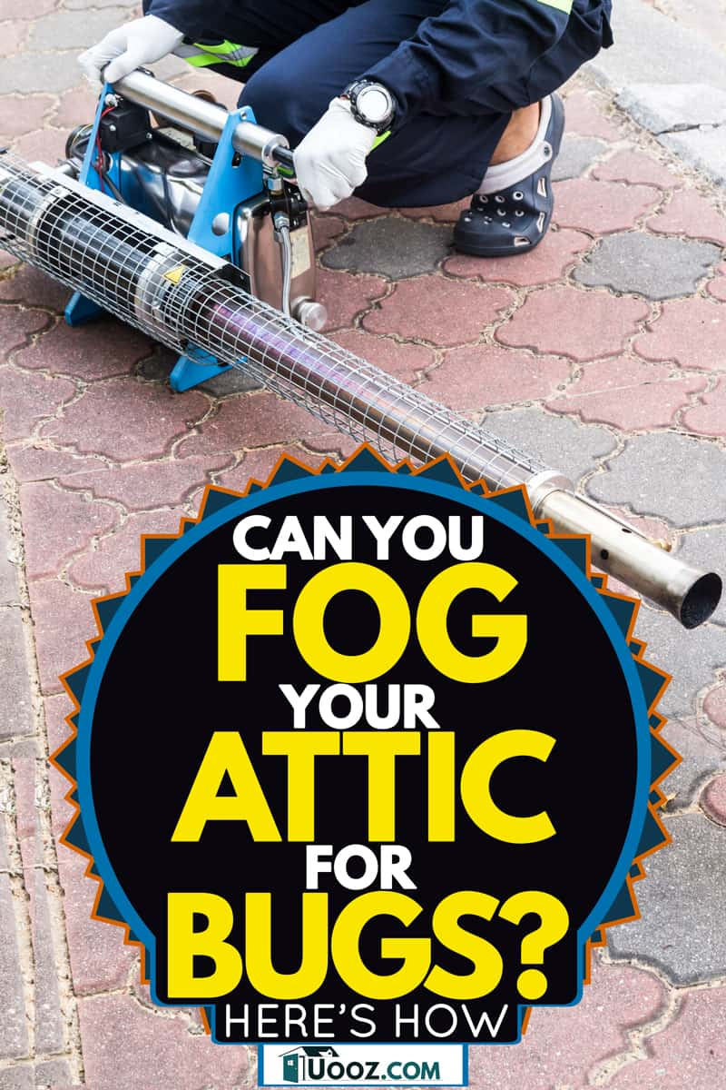 A fogging machine being prepared by a worker to fog a whole house, Can You Fog Your Attic For Bugs? [Here's How]