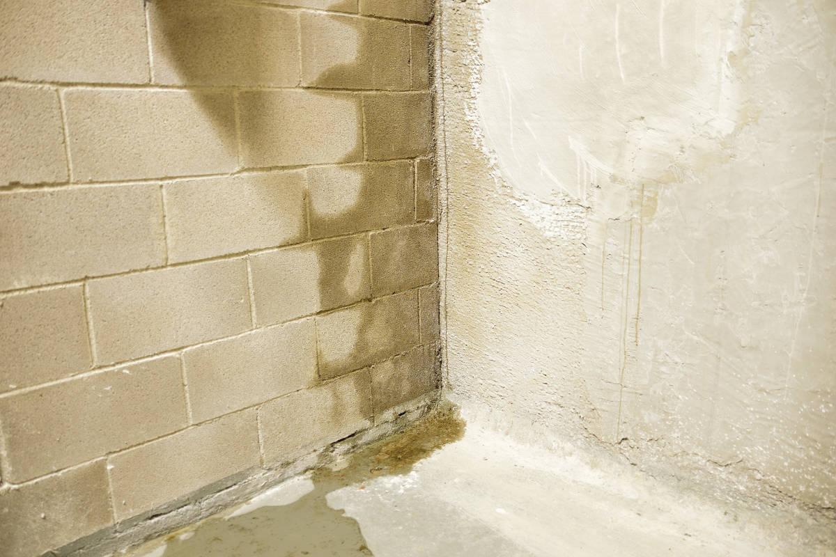 Water leaking on basement wall