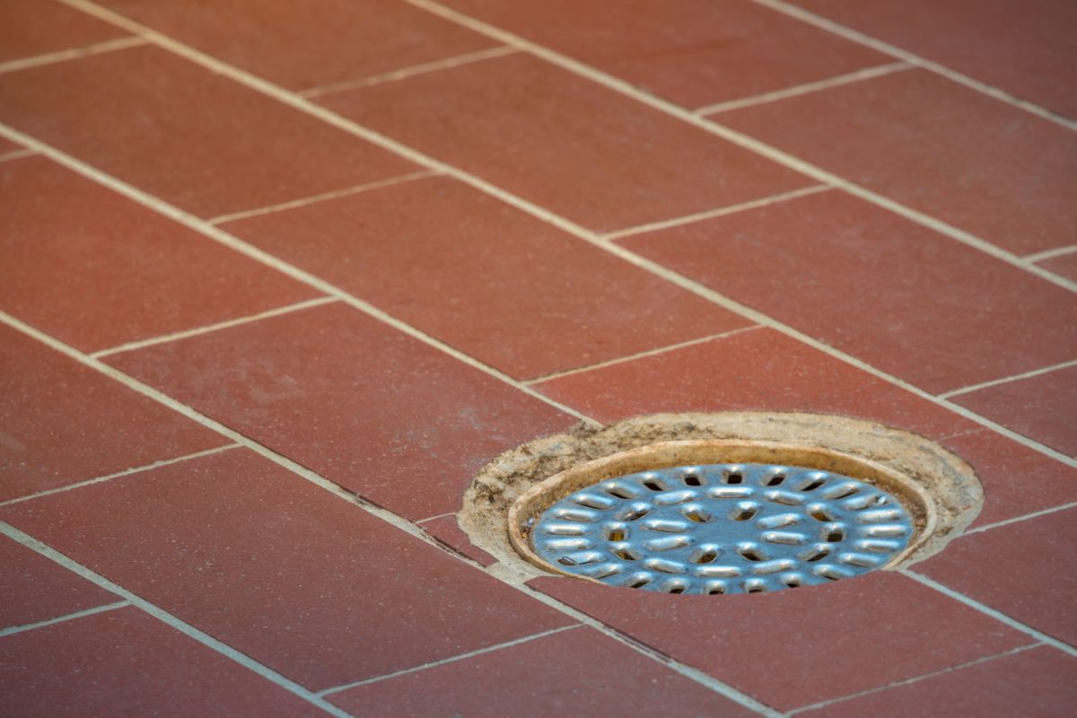 A floor drain photographed on the basement