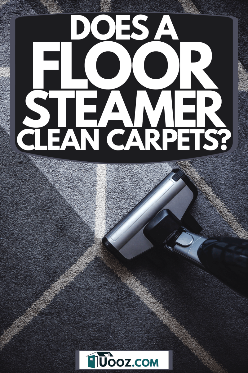 A steam cleaner cleaning a violet colored carpet, Does A Floor Steamer Clean Carpets?