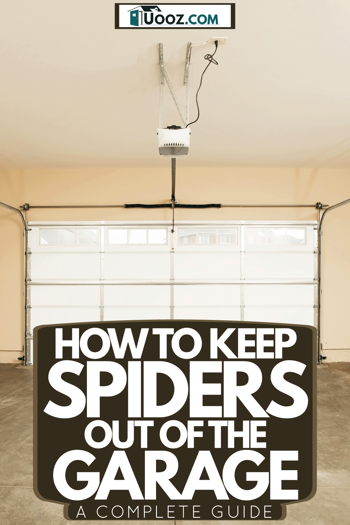 An empty interior of a garage with beige painted walls with a spider illustration, How To Keep Spiders Out Of The Garage [A Complete Guide]