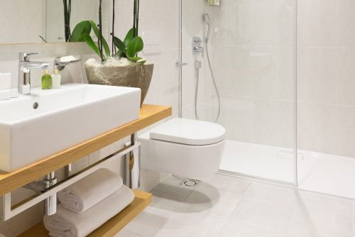 Read more about the article How To Clean Toilet Siphons
