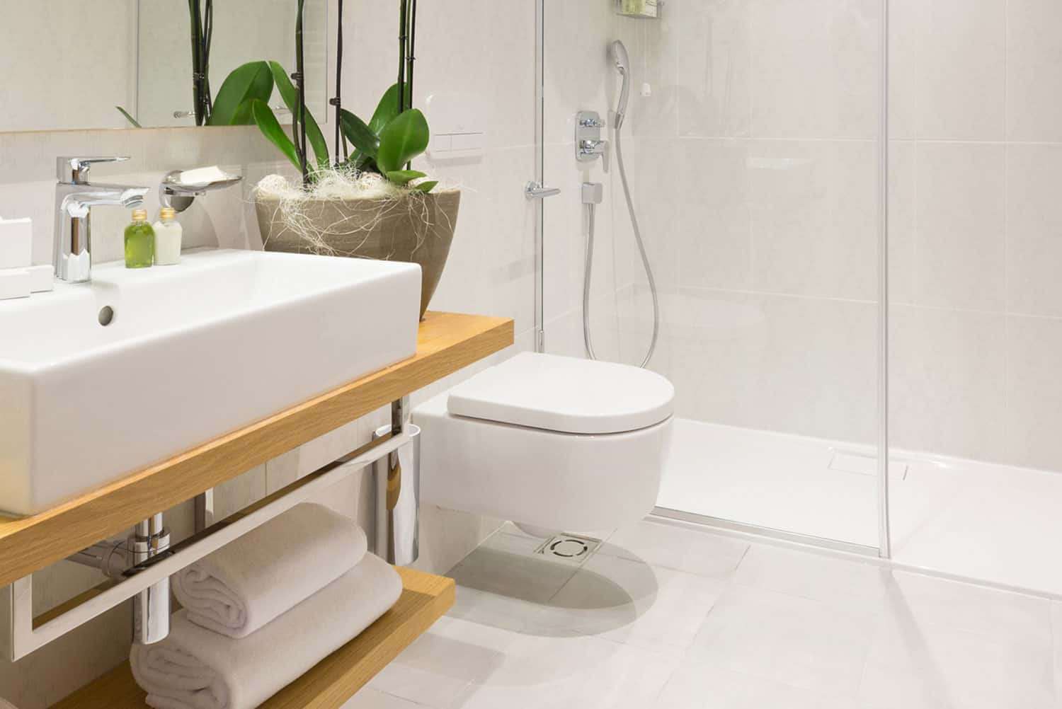 Interior of a modern bathroom with toilet, How To Clean Toilet Siphons