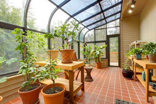 Read more about the article Should You Have A Floor In A Greenhouse?