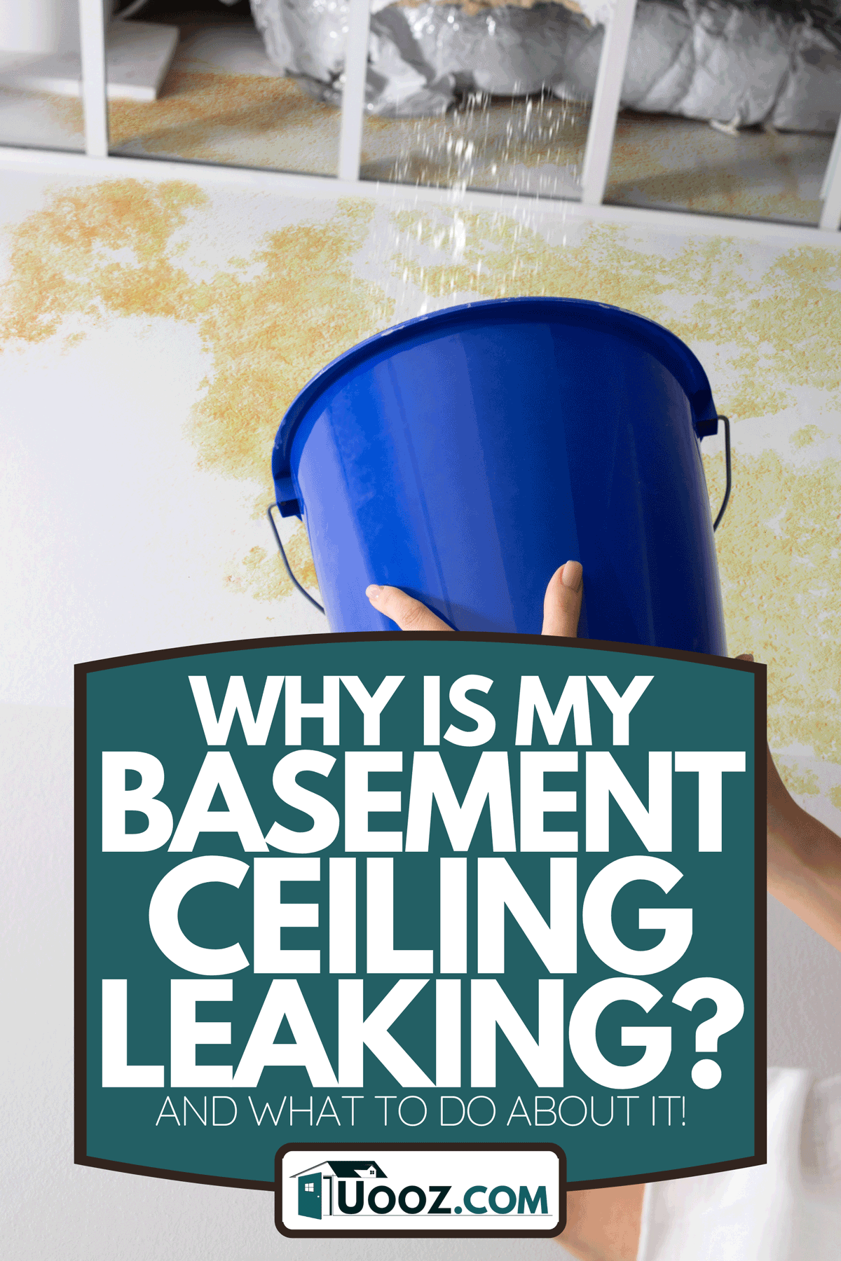 A woman holding a blue bucket under the leak ceiling in basement, Why Is My Basement Ceiling Leaking? [And What To Do About It!]