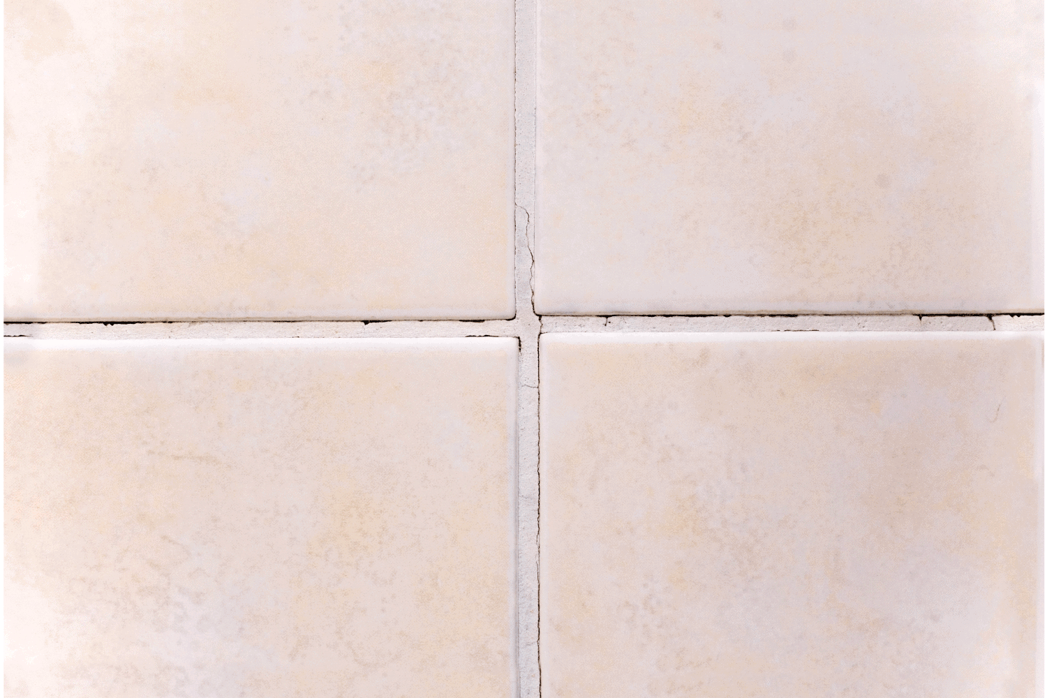 Close-up of damage on joint grout in a bathromm shower. Cracks in the joint grout allow the penetration of water into the wall which causes mold formation
