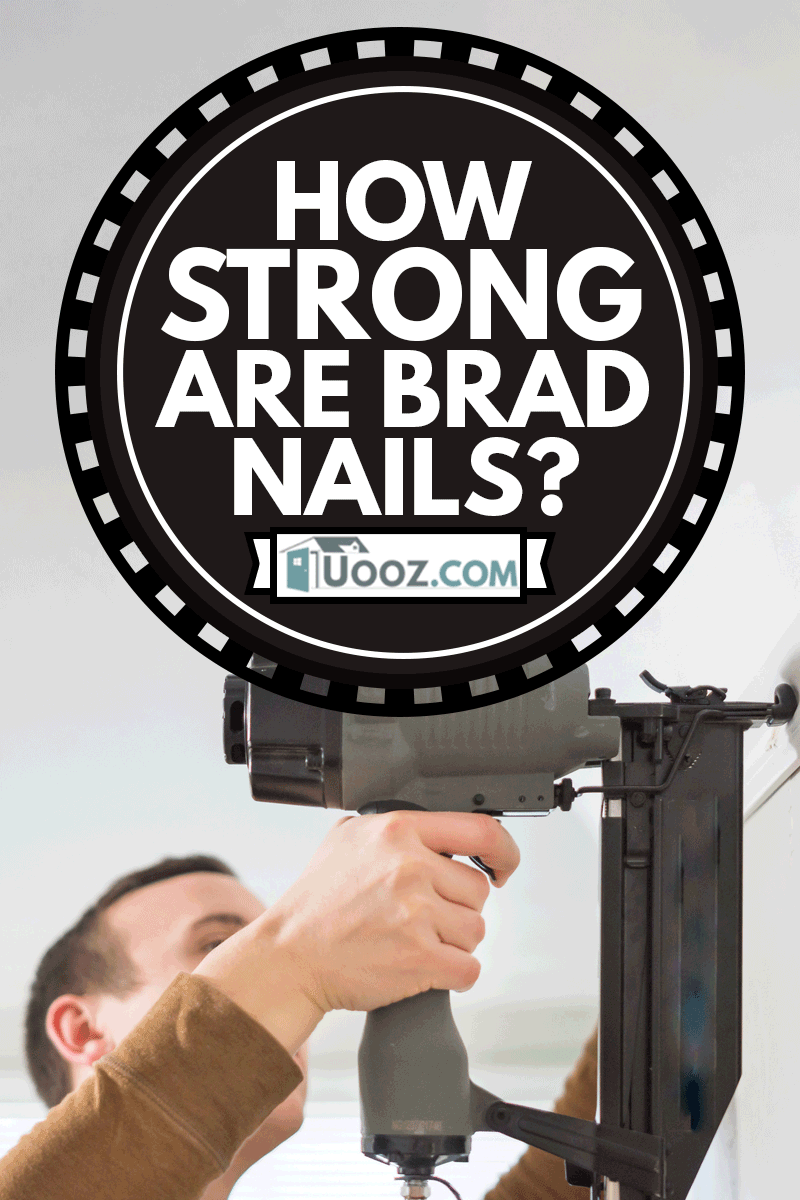 Young father uses generic nail gun to fasten white trim to wall, How Strong Are Brad Nails?