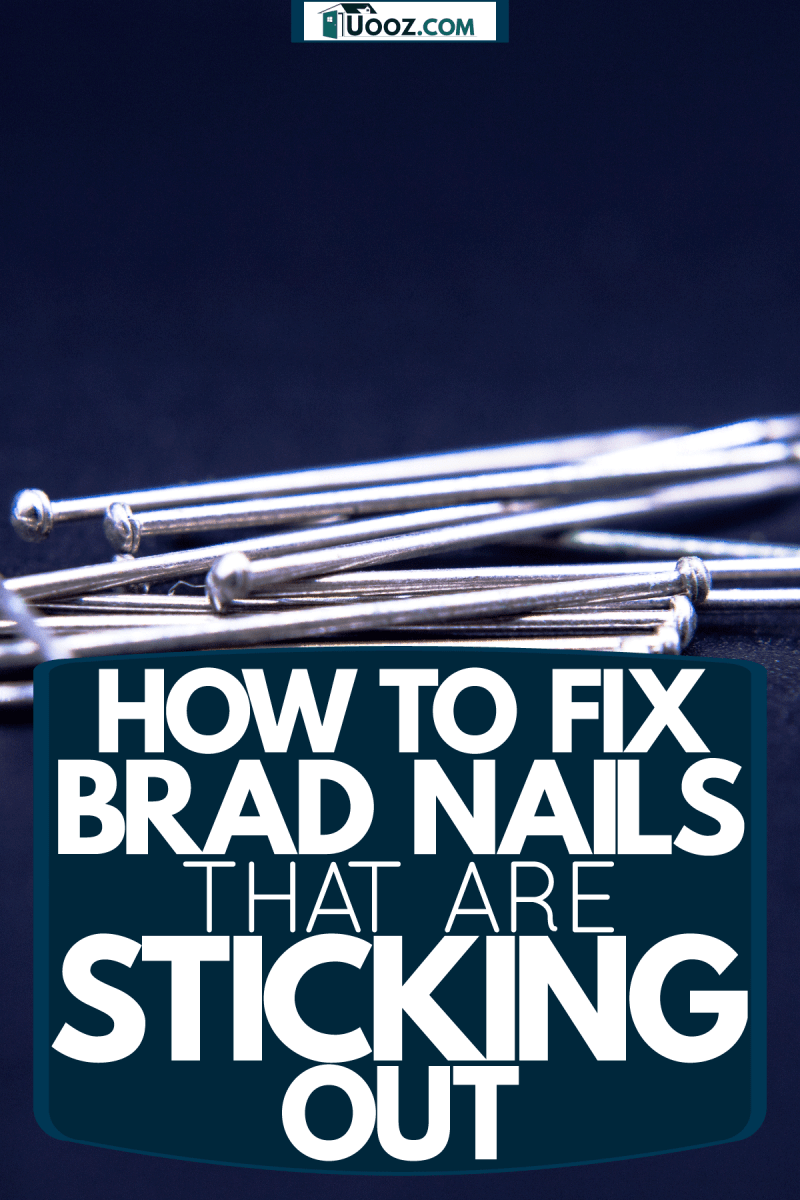 Brad nails placed on a blue background, How To Fix Brad Nails That Are Sticking Out