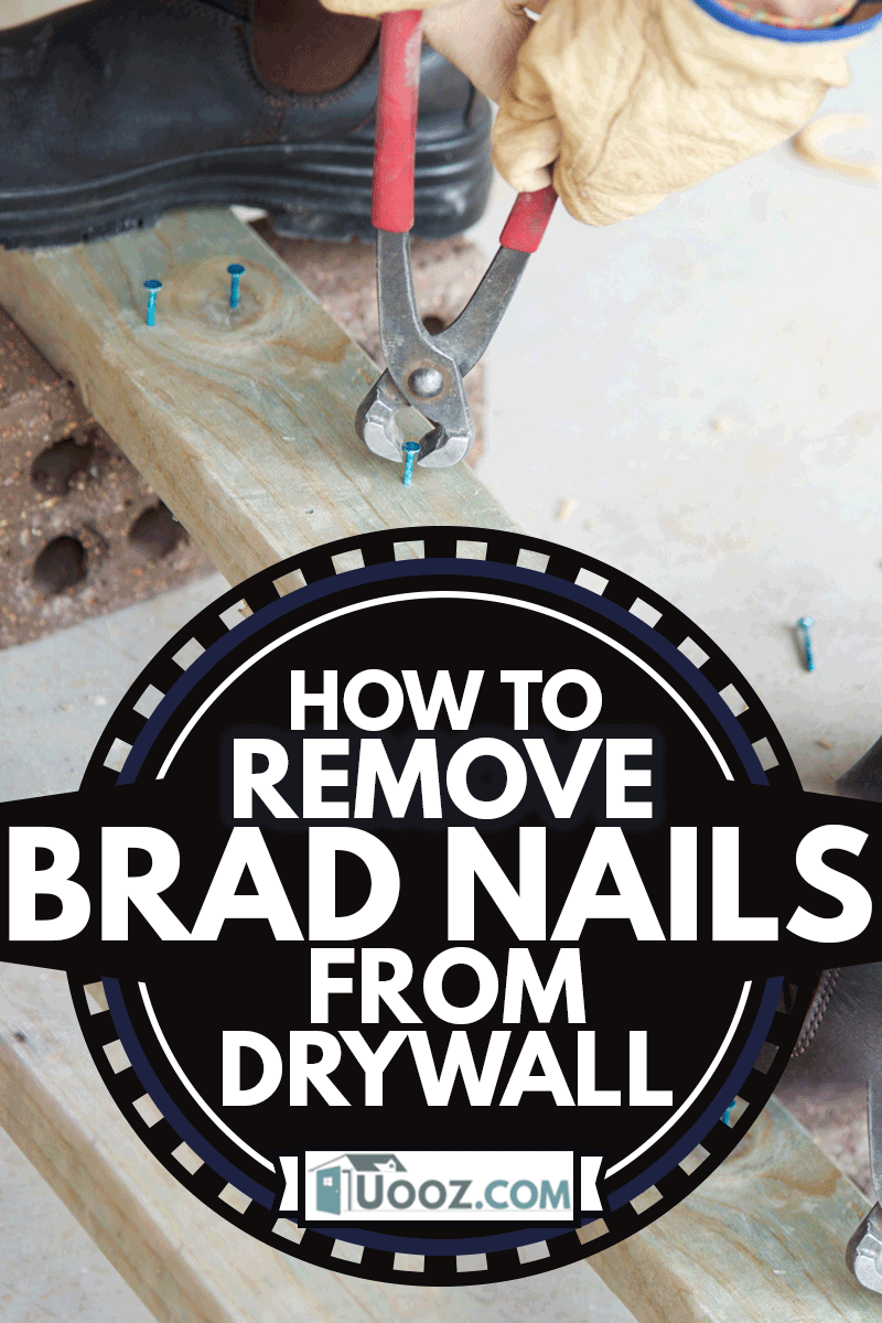 View of a male construction worker using a nail puller on timber, How To Remove Brad Nails From Drywall