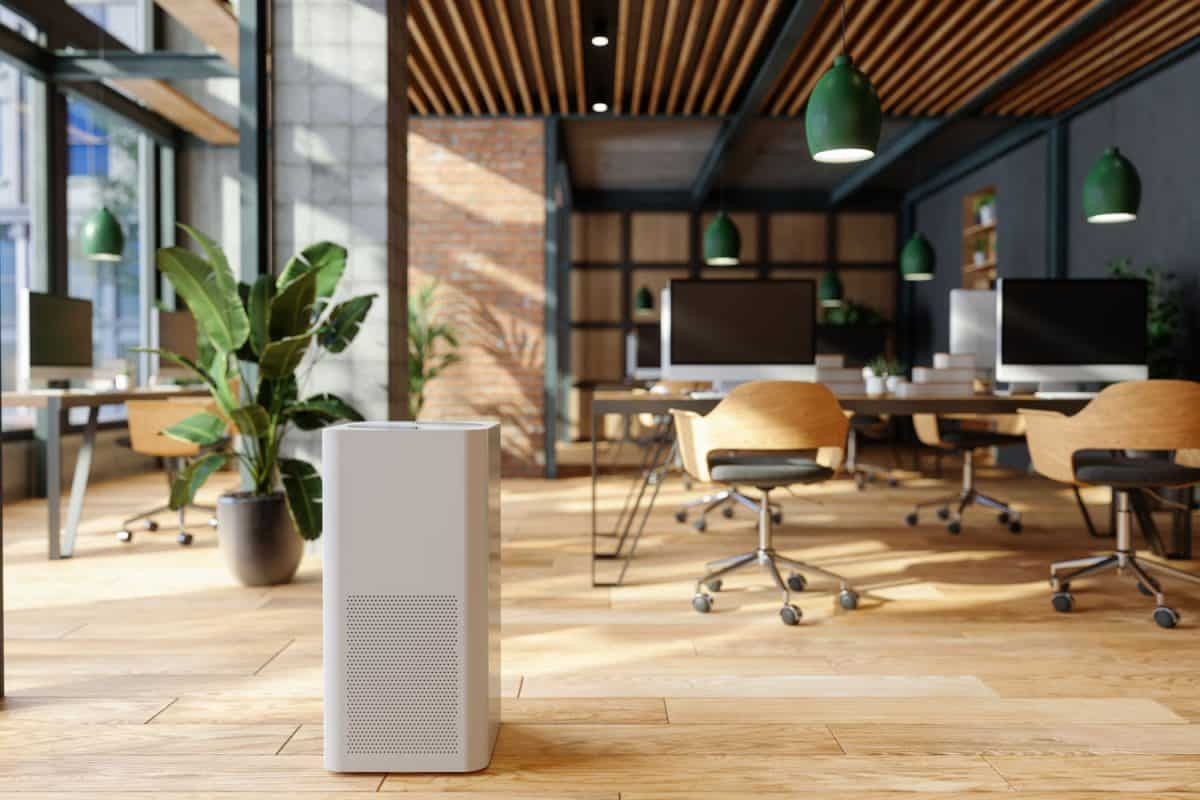 A modern and luxurious office with trellis design ceiling, wooden plank flooring and plants inside for that earthy feeling