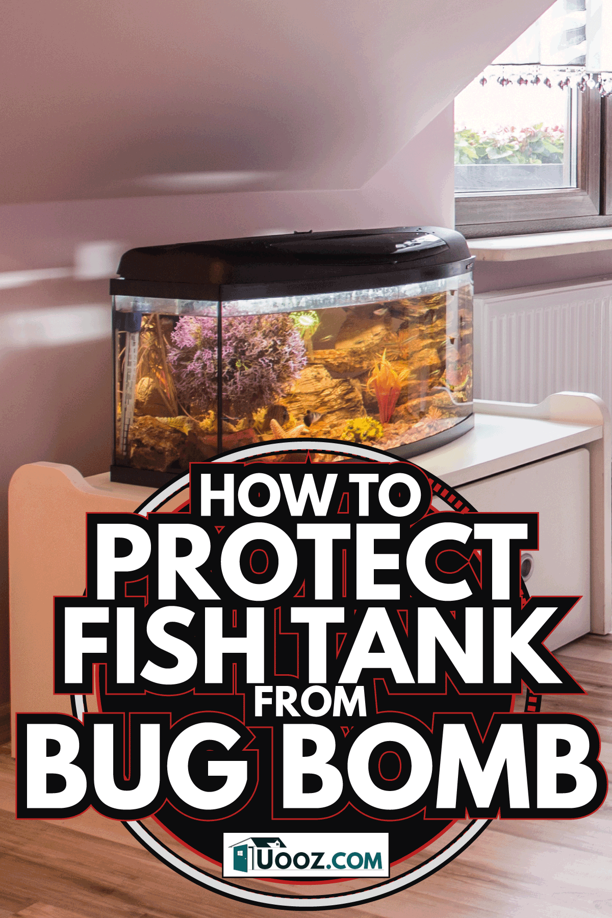 Cozy room for teenage gir with fish tank beside the window. How To Protect Fish Tank From Bug Bomb