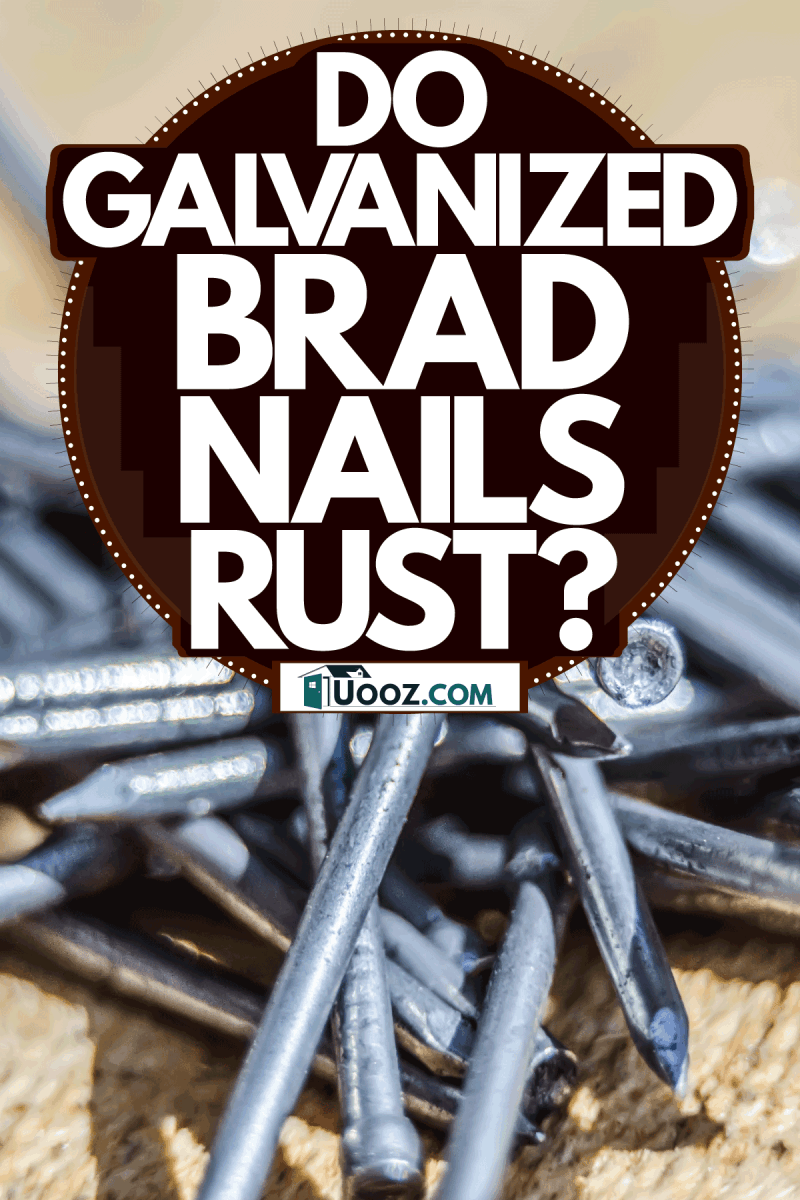 Galvanized iron nails piled on the table, Do Galvanized Brad Nails Rust? Can You Use Them Outdoors?