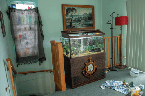 Read more about the article How To Protect Fish Tank From Bug Bomb